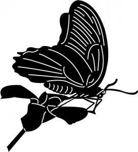 Butterflies7.jpg