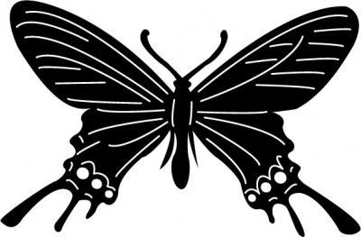 Butterflies17.jpg