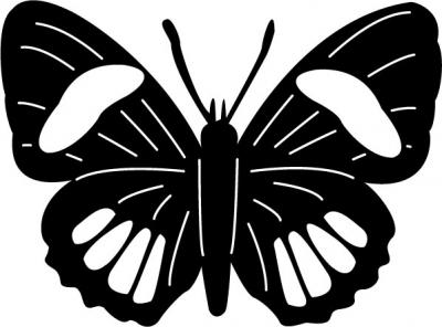 Butterflies18.jpg