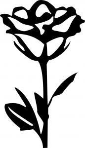 Floral-15.jpg