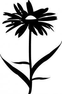 Floral-36.jpg