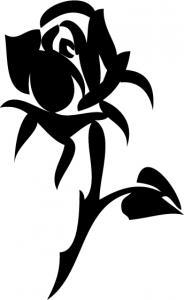 Floral-40.jpg