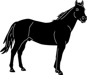 Horses2-8.jpg