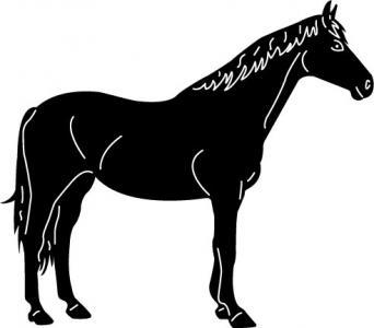 Horses2-10.jpg