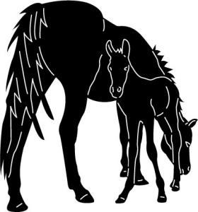 Horses2-12.jpg