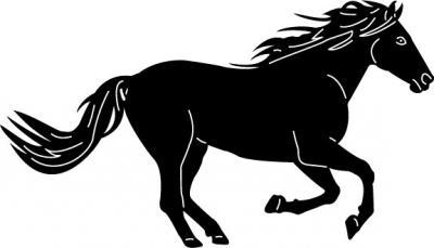 Horses2-13.jpg