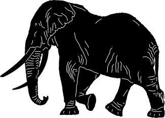 Safari-Animal-11.jpg